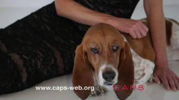 Companion Animal Protection Society TV Spot - Thumbnail 2