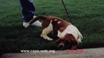 Companion Animal Protection Society TV Spot - Thumbnail 3