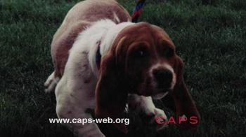 Companion Animal Protection Society TV Spot - Thumbnail 4
