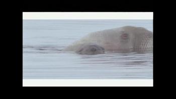 Rolex TV Spot, 'National Geographic: Adam Ravtech' - Thumbnail 7