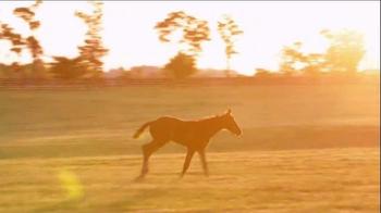 Winstar Farm TV Spot, 'The Dream' - Thumbnail 3