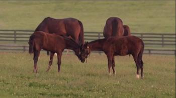 Winstar Farm TV Spot, 'The Dream' - Thumbnail 4