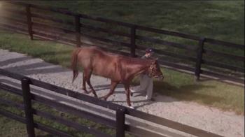 Winstar Farm TV Spot, 'The Dream' - Thumbnail 7