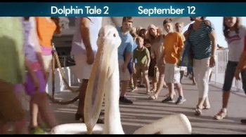 Dolphin Tale 2 - Alternate Trailer 14