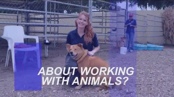 Animal Behavior College TV Spot, 'Become a Certified Dog Trainer' - Thumbnail 2