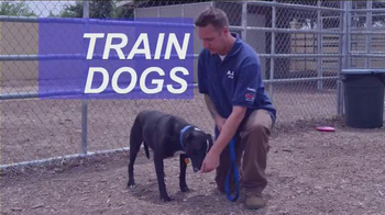 Animal Behavior College TV Spot, 'Become a Certified Dog Trainer' - Thumbnail 5