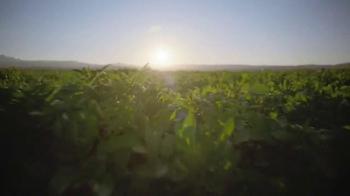 Ore Ida Golden Crinkles TV Spot, 'Justice for Potatoes League' - Thumbnail 5