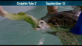 Dolphin Tale 2 - Alternate Trailer 3
