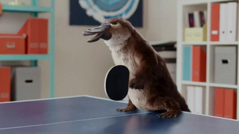 Lunchables with Smoothie TV Spot, 'Smoothie Kabobbles: Ping Pong' - Thumbnail 7