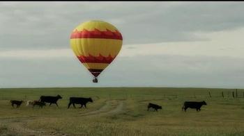 Black Bear Diner TV Spot, 'Balloon Bears' - Thumbnail 2