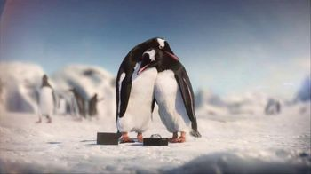 Kay Jewelers Diamonds in Rhythm TV Spot, 'Penguin Kiss: Save 25% on Bulova Watches' - 1457 commercial airings