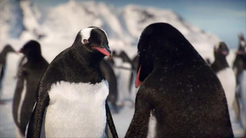 Kay Jewelers Diamonds in Rhythm TV Spot, 'Penguin Kiss: Save 25 Percent on Bulova Watches' - Thumbnail 3