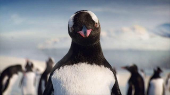 Kay Jewelers Diamonds in Rhythm TV Spot, 'Penguin Kiss: Save 25 Percent on Bulova Watches' - Thumbnail 4