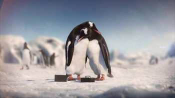 Kay Jewelers Diamonds in Rhythm TV Spot, 'Penguin Kiss: Save 25 Percent on Bulova Watches'