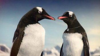 Kay Jewelers Diamonds in Rhythm TV Spot, 'Penguin Kiss: Christmas: Save 30 Percent' - 1998 commercial airings