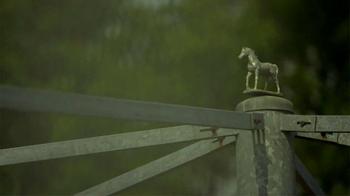 Lane's End TV Spot, 'Classic Stallions' - Thumbnail 1