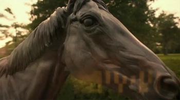 Lane's End TV Spot, 'Classic Stallions' - Thumbnail 10