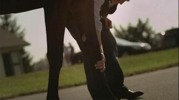 Lane's End TV Spot, 'Classic Stallions' - Thumbnail 7