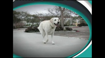 ActivPhy Joint Support TV Spot, 'Old Dogs' - Thumbnail 1