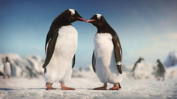 Kay Jewelers Diamonds in Rhythm TV Spot, 'Penguin Kiss: Christmas: Save 25 Percent on Bulova Watches' - Thumbnail 10