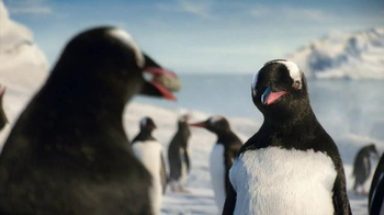 Kay Jewelers Diamonds in Rhythm TV Spot, 'Penguin Kiss: Christmas: Save 25 Percent on Bulova Watches' - Thumbnail 2