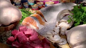 Blue Buffalo TV Spot, 'Better Ingredients' - Thumbnail 8