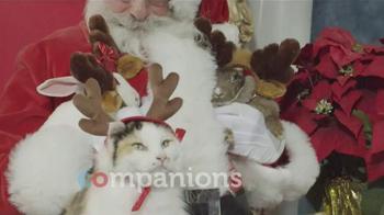 PETCO TV Spot, 'Giving Back: Cat Furniture' - Thumbnail 3