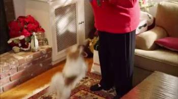 PETCO TV Spot, 'Giving Back: Cat Furniture' - Thumbnail 4