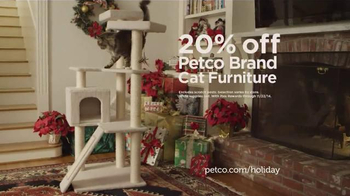 PETCO TV Spot, 'Giving Back: Cat Furniture' - Thumbnail 6