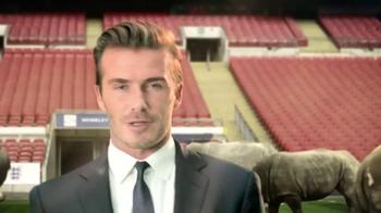 WildAid TV Spot, 'Whole World' Ft. David Beckham, Yao Ming, Prince William - Thumbnail 5