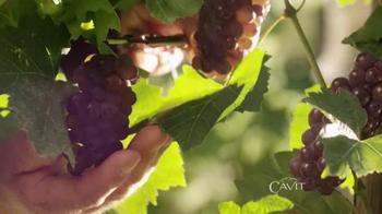 Cavit Collection TV Spot, 'Sí Importa' [Spanish] - Thumbnail 5