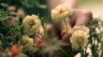 Cavit Collection TV Spot, 'Sí Importa' [Spanish] - Thumbnail 6