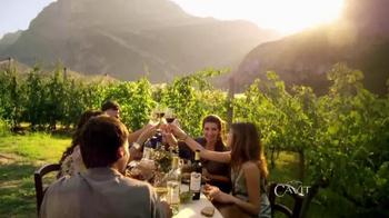 Cavit Collection TV Spot, 'Sí Importa' [Spanish] - Thumbnail 9