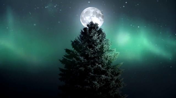 Jeep Cherokee TV Spot, 'Big Finish: Christmas Lights' - Thumbnail 6