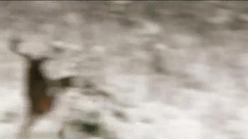 Burt Coyote Lumenok TV Spot, 'Simply the Best' - Thumbnail 6
