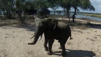 Dallas Safari Club Convention & Sporting Expo TV Spot - Thumbnail 8