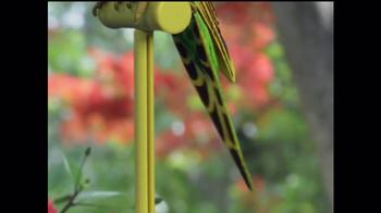Perfect Polly TV Spot - Thumbnail 4