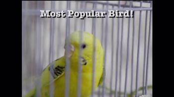 Perfect Polly TV Spot - Thumbnail 5