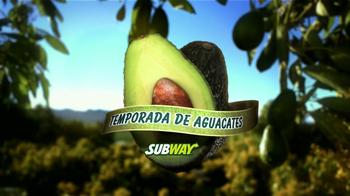 Subway Turkey and Bacon Avocado TV Spot, 'Temporada de Aguacates' [Spanish] - Thumbnail 4
