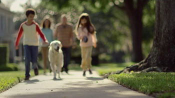 Purina Dog Chow Light & Healthy TV Spot - Thumbnail 1