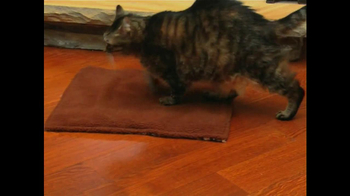 Cat's Meow Mat TV Spot - Thumbnail 4