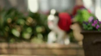 Purina Dog Chow TV Spot, 'Superhéroe' [Spanish] - Thumbnail 1