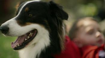 Purina Dog Chow TV Spot, 'Superhéroe' [Spanish] - Thumbnail 8