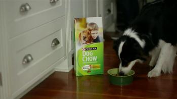 Purina Dog Chow TV Spot, 'Superhéroe' [Spanish] - Thumbnail 9