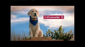 K9 Advantix II TV Spot, 'Tick Nuisance' - Thumbnail 1