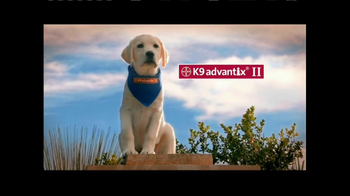 K9 Advantix II TV Spot, 'Tick Nuisance' - 346 commercial airings