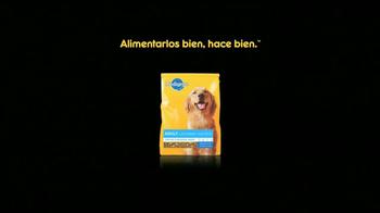 Pedigree TV Spot, 'Albergues de Animales' [Spanish] - Thumbnail 10