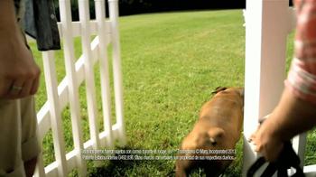 Pedigree TV Spot, 'Albergues de Animales' [Spanish] - Thumbnail 8