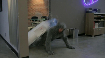 Wilfred The Complete Season 2 Blu-ray and DVD TV Spot - Thumbnail 4