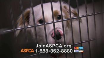ASPCA TV Spot, 'Love' Featuring Kim Rhodes - Thumbnail 9